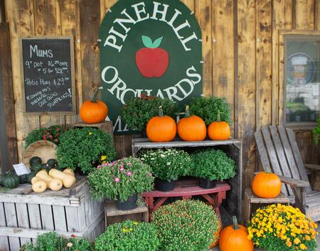 Pine Hill Orchards Storefront